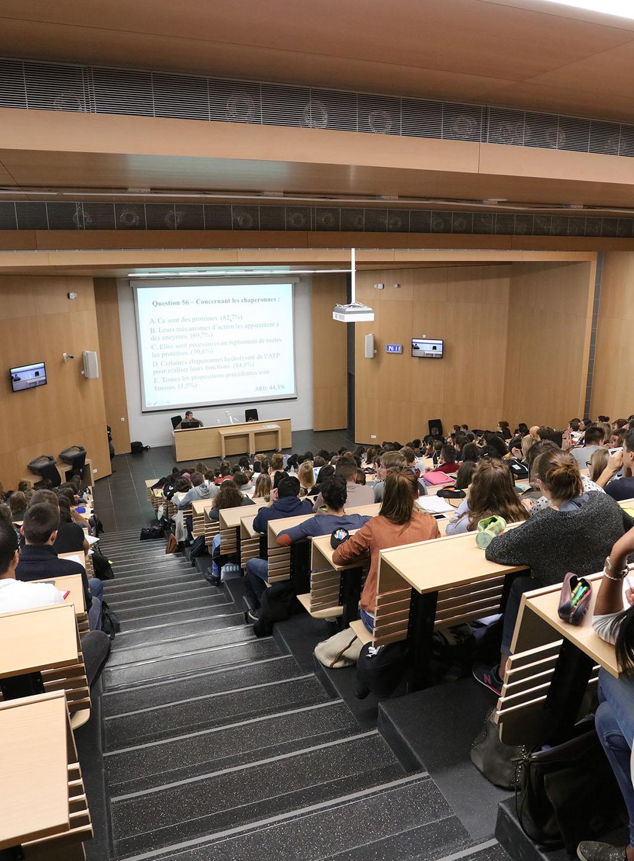 Ecole / Université